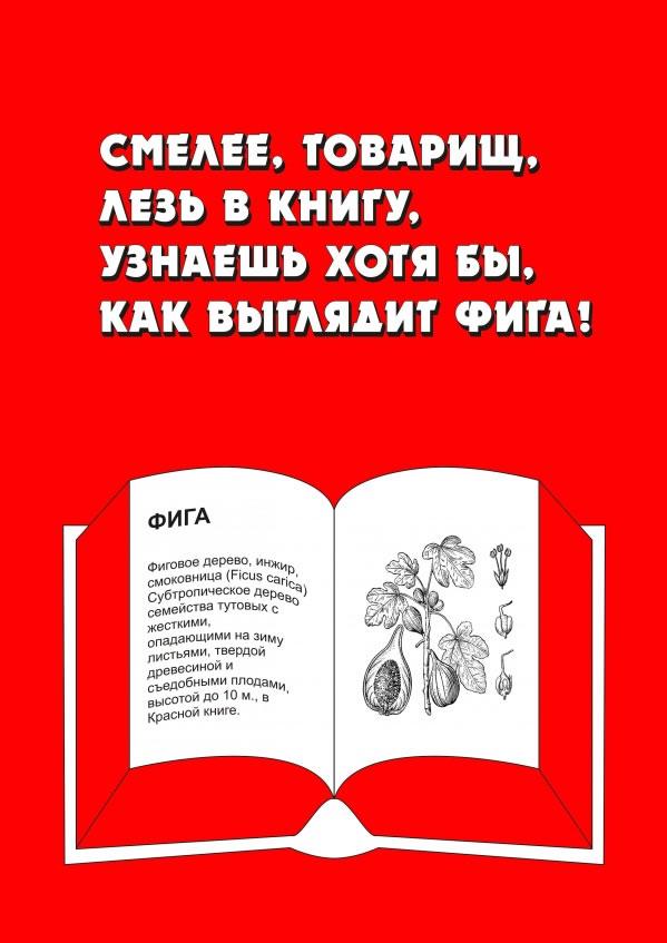 social_book_poster_27