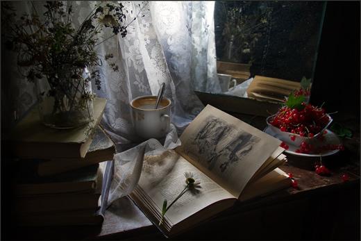 Летнее вечернее чтение