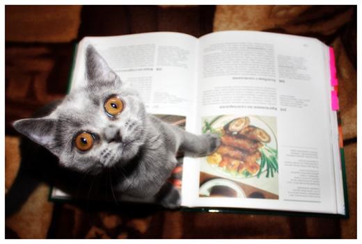 Мне вот это блюдо пожалуйста