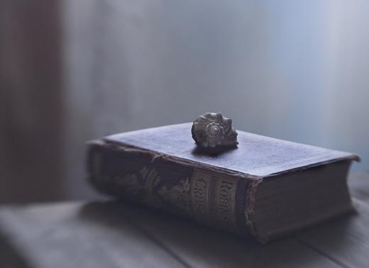 Ракушка и книга