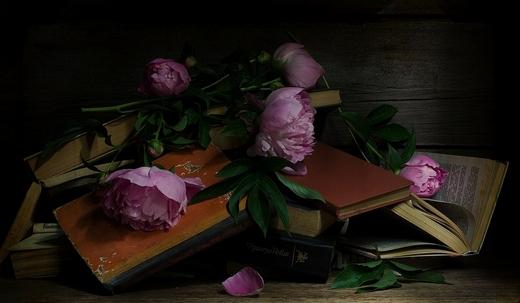 Светлая память книге...
