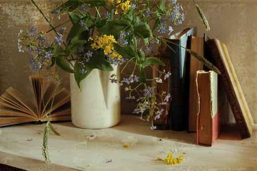 с полевыми цветами и книгами