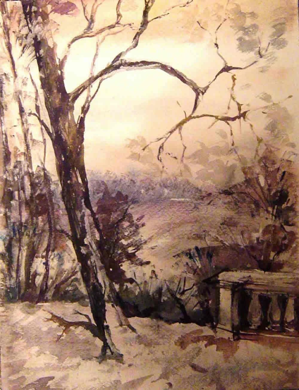 Парк в лесу